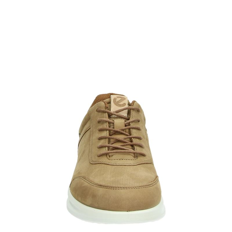 Ecco Aquet - Lage sneakers - Bruin
