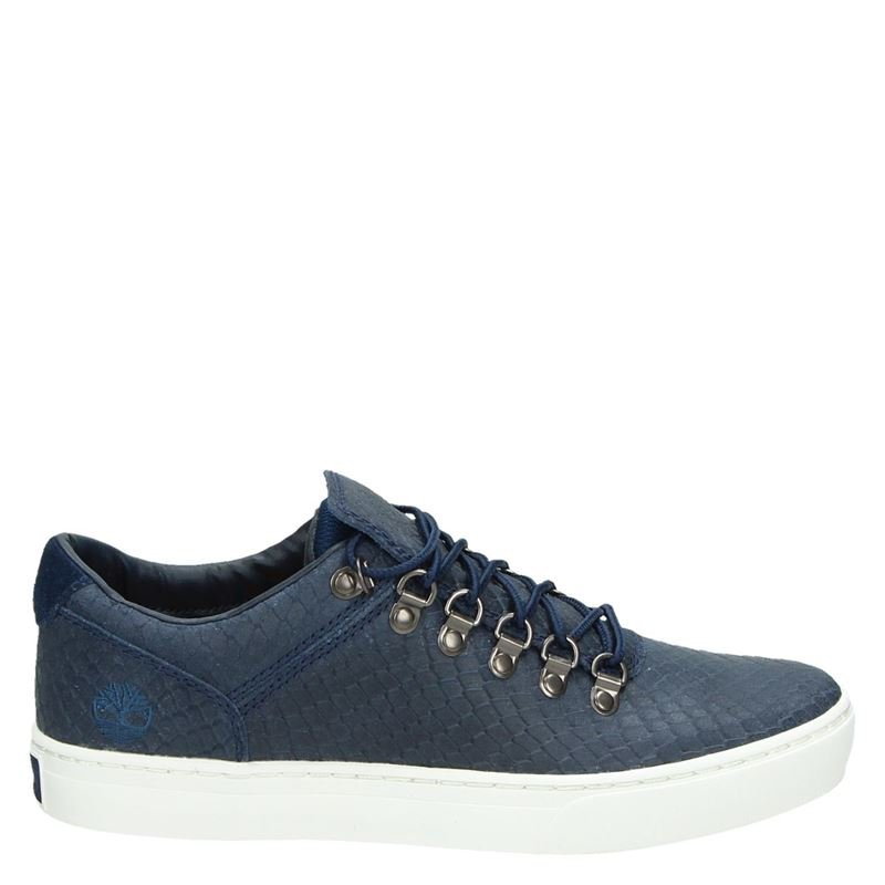 Timberland Capsole Alpine - Lage sneakers - Blauw