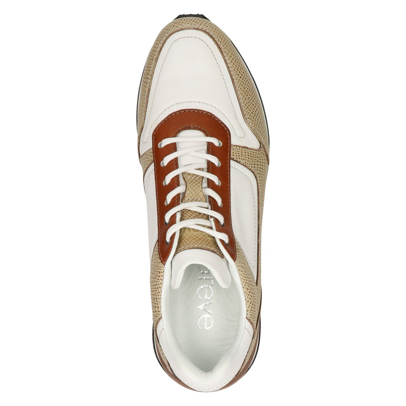 Greve - Lage sneakers - Beige