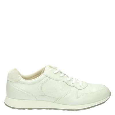 Sneakers dames sneak
