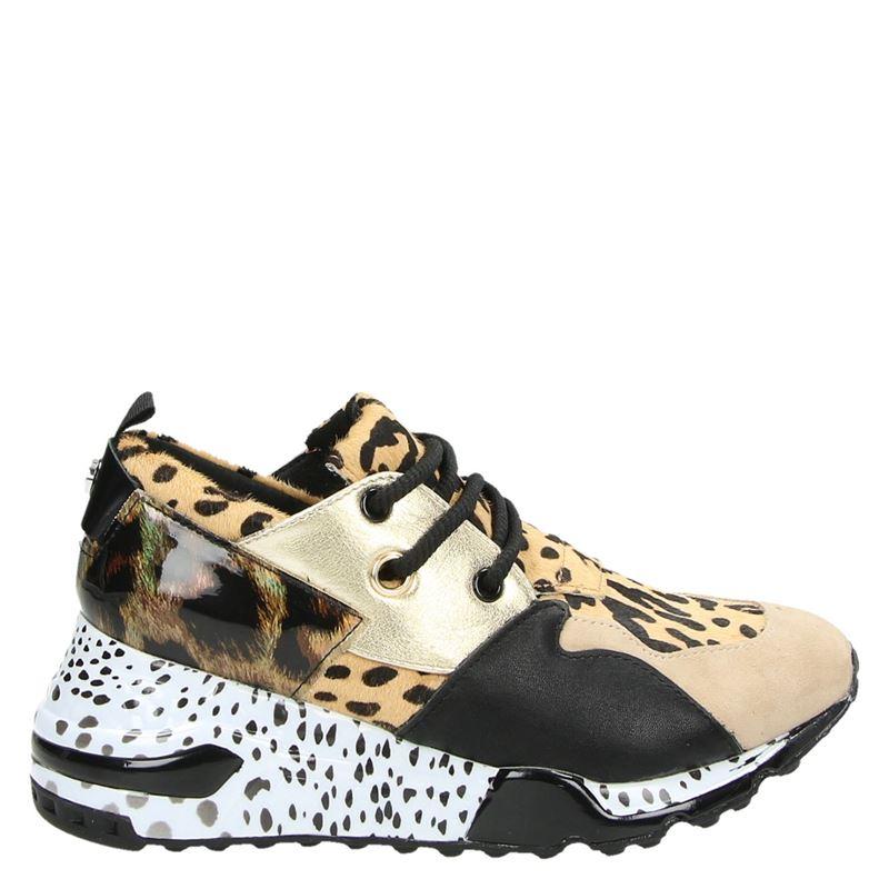 Steve Madden Cliff - Lage sneakers - Bruin
