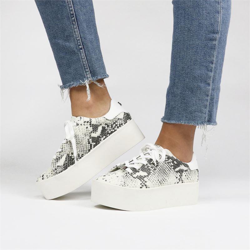 Steve Madden Palmer - Platform sneakers - Multi