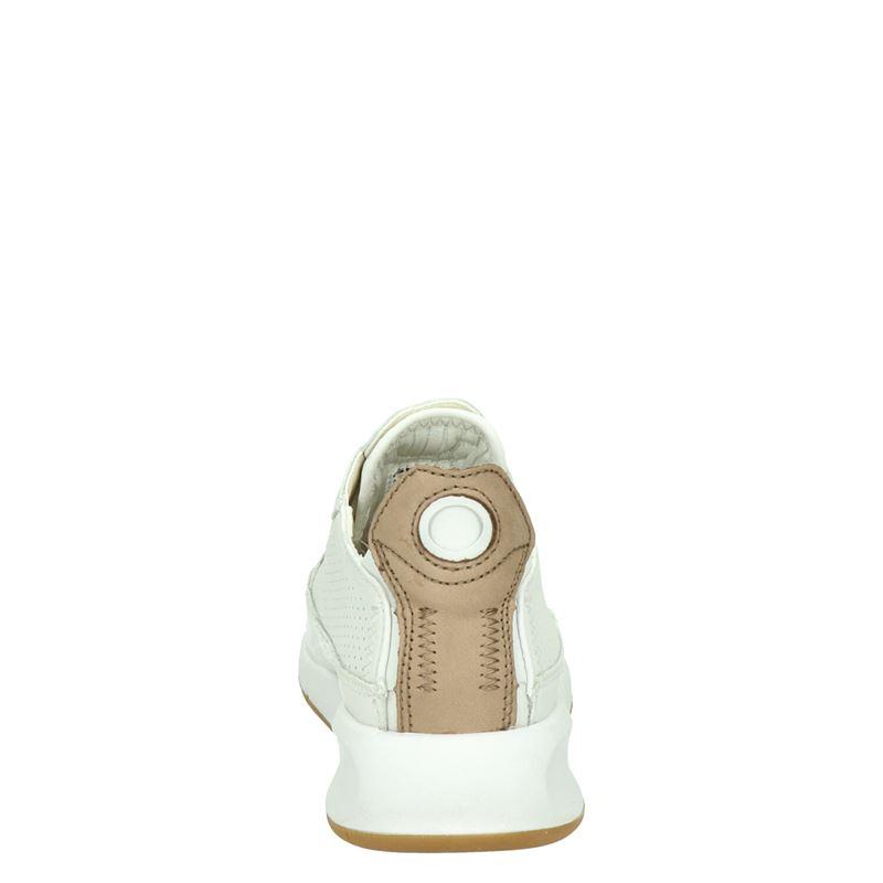 Geox Aerantis - Lage sneakers - Wit