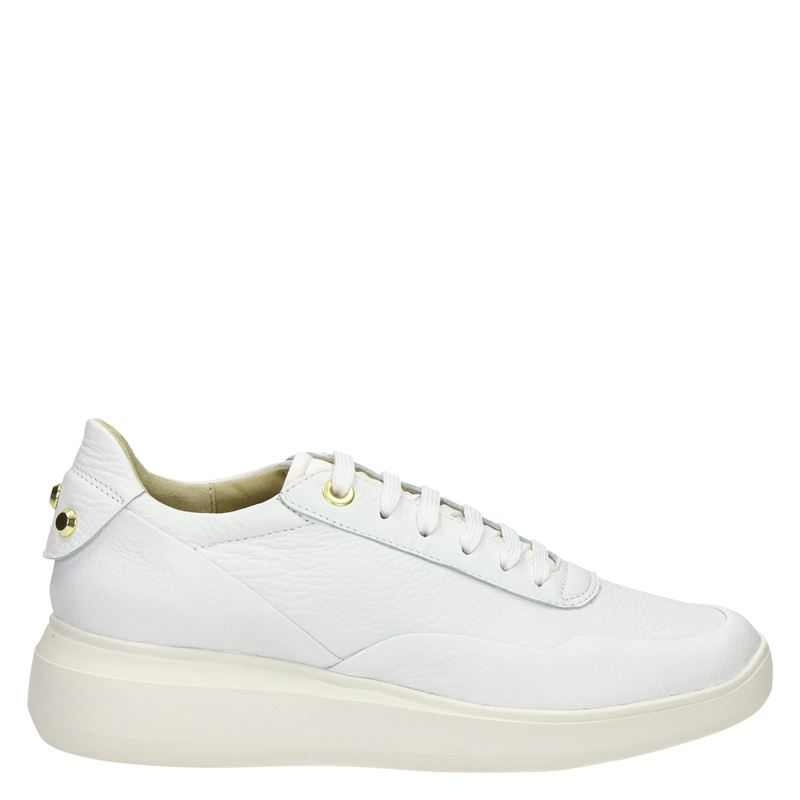 Geox - Lage sneakers - Wit