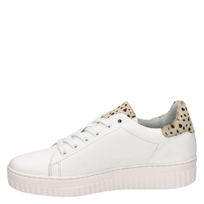 Nelson - Lage sneakers - Wit