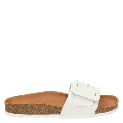 Verbenas - Slippers