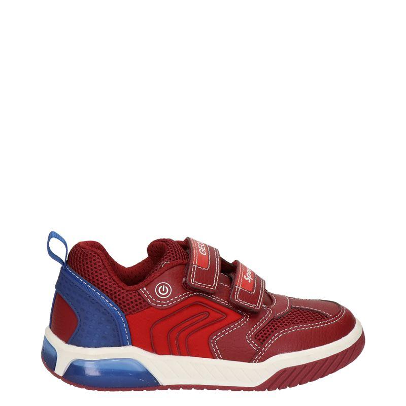 Geox Inek Boy - Lage sneakers - Rood