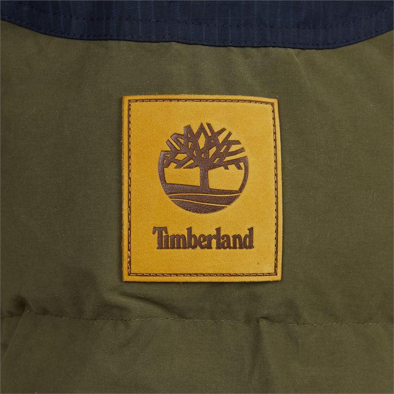 Timberland - Jas - Groen