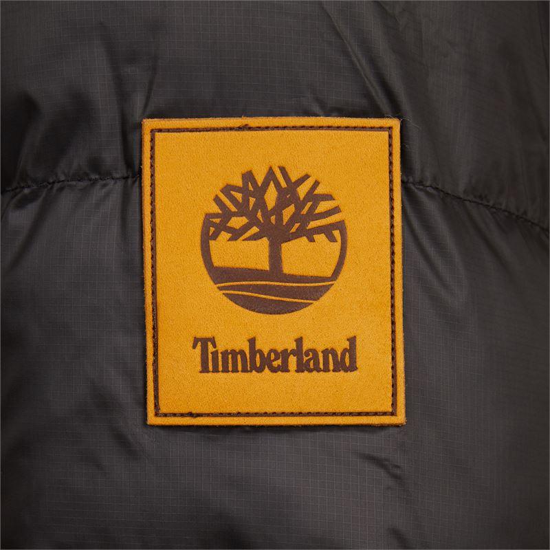 Timberland - Jas - Zwart